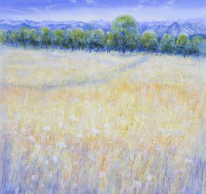 Sommerfeld, 120 x 120 cm, 2007