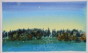 Sternenwiese, Aquarell, 15 x 26 cm, 2006