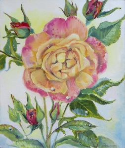 Rose im Prälatengarten