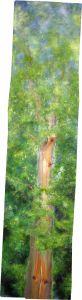 Baum, Öl/Acryl auf Fichtenbrett, 40 x 150 cm, 2011